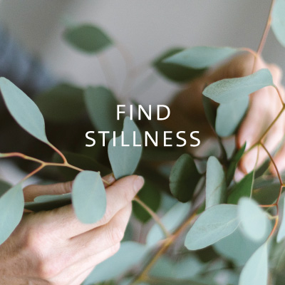 Find Stillness