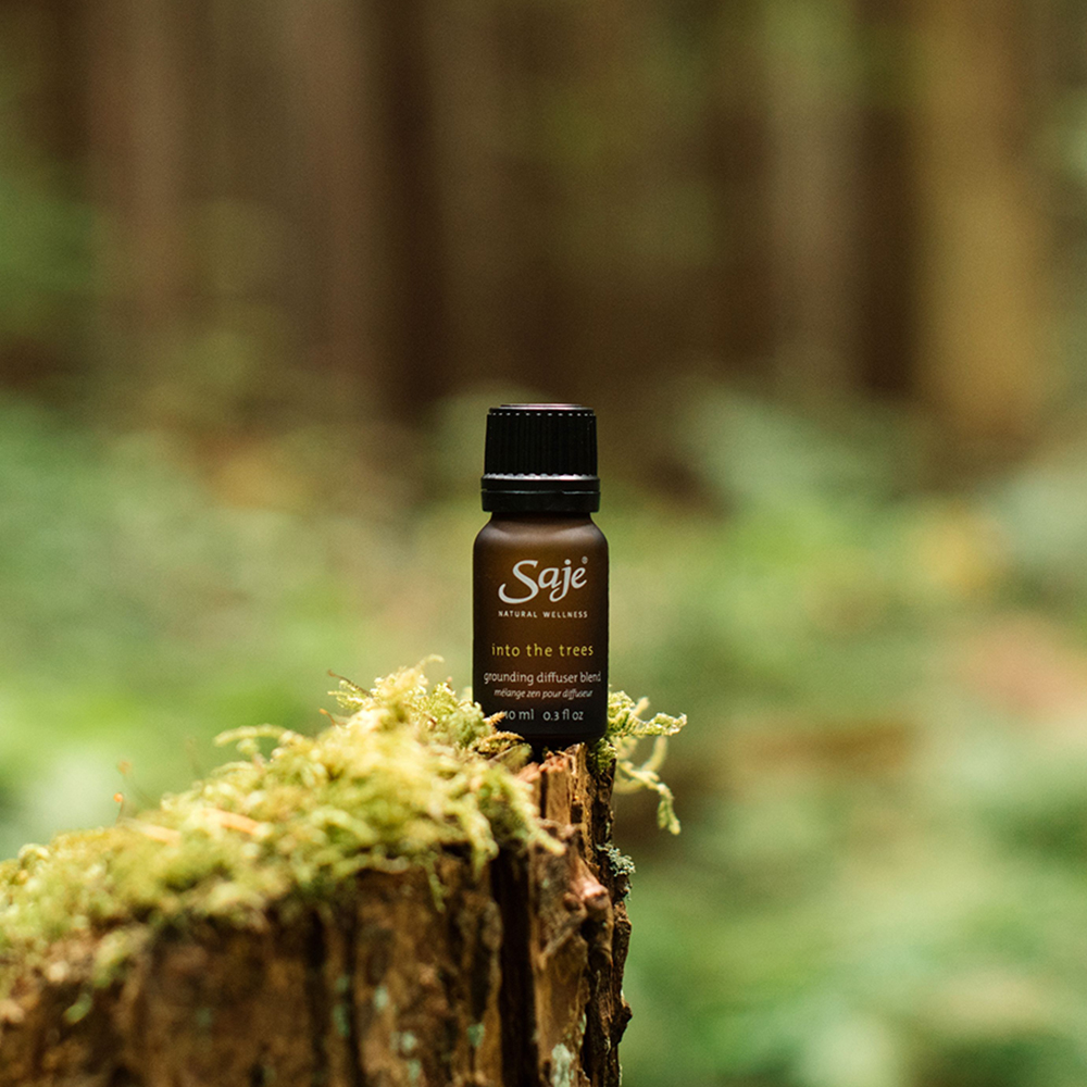 into the trees diffuser blend