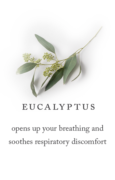 eucalyptus opens up your breathing and soothes respiratory discomfort
