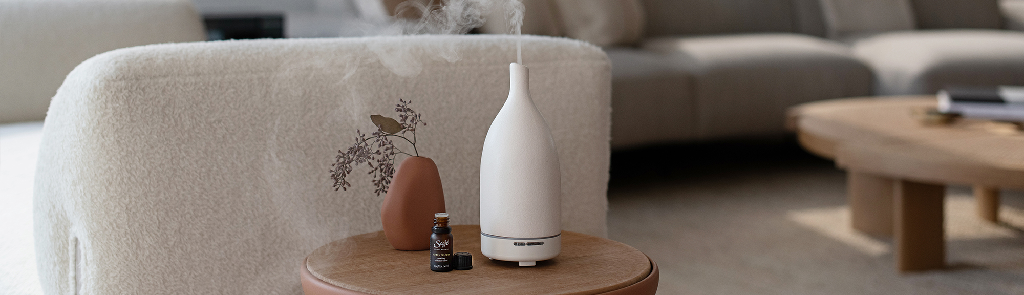 Diffusing and beyond